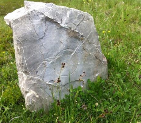 Rrezikohen varret shekullore nga keqbërësit në bjeshkë të Kelmendit